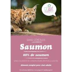 Croquettes sans céréale  au Saumon pour chat - CAT APART