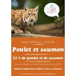 Croquettes sans céréale Poulet et Saumon pour chaton - CAT APART