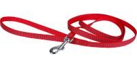 Kit harnais, laisse et collier spécial Chaton Protect - WOUAPY