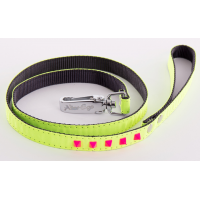 Laisse pour chat à rivets pyramide Fluo Color 1m - ALTER EGO