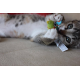 Jouets dentaires pour chat à la cataire Chew Mice - PETSTAGES