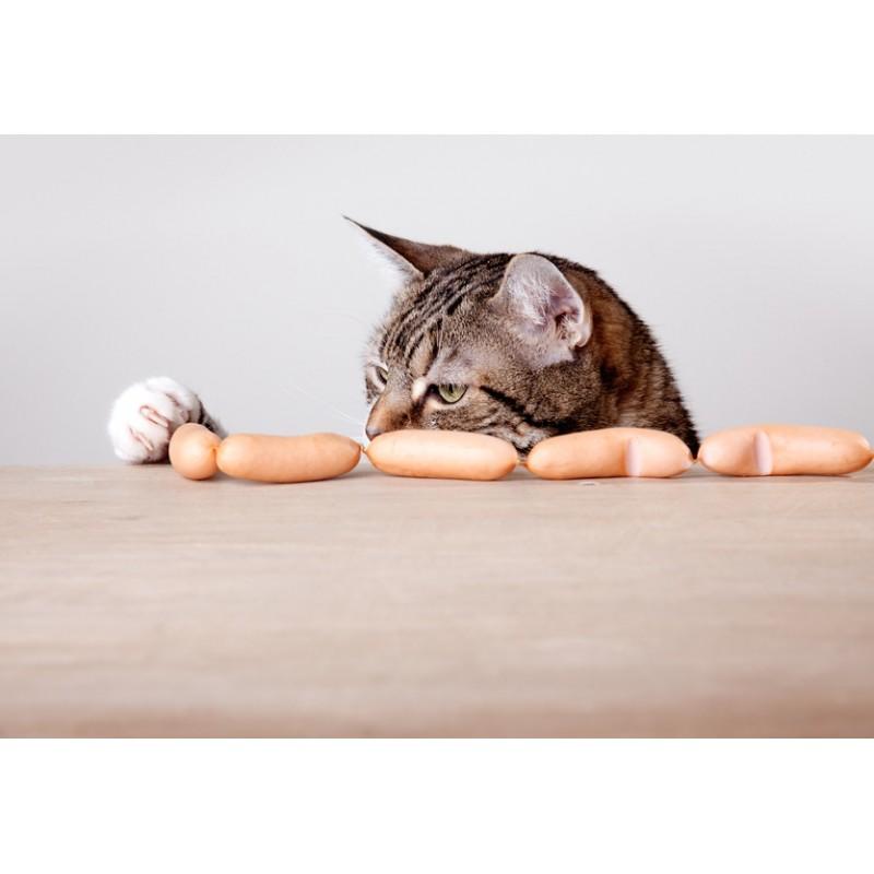 Que dois-je donner à manger à mon chat pour qu'il soit en bonne santé?