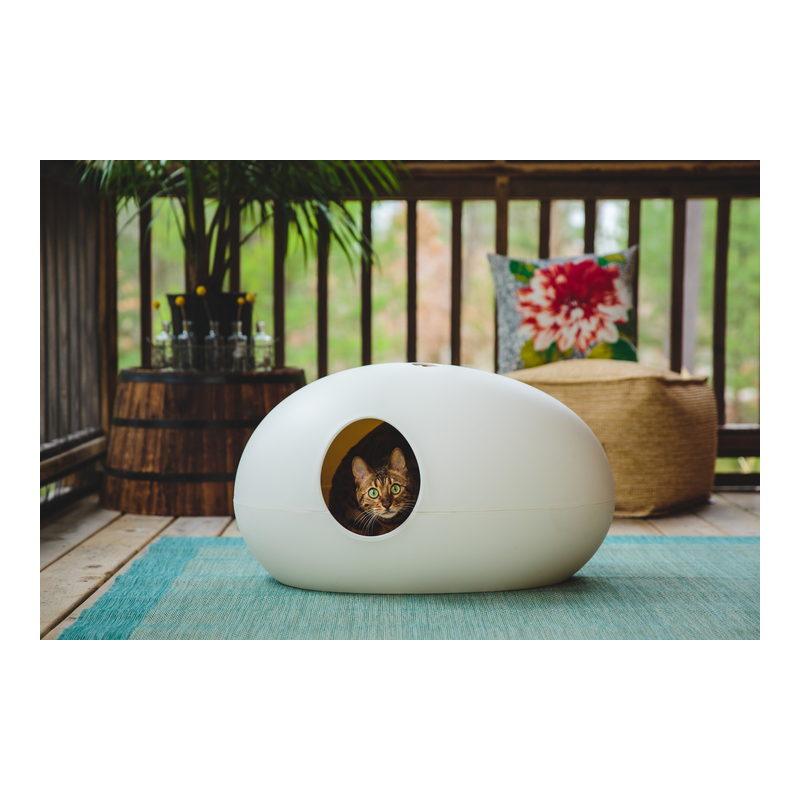 Liti re pour chat design poopoopedo d corative cat apart - Niche chat design ...