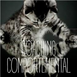 COACHING COMPORTEMENTALE - Rencontrez nos comportementalistes