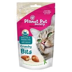 PET PLANET - Friandises pour la beauté du poil et de la peau des chats 40 g
