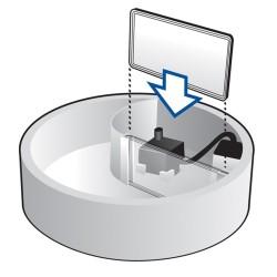 Filtre pour fontaine à eau Serenity (pack de 3) - PIONEER PET