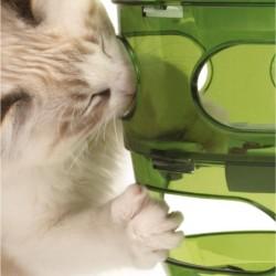 Jeu d'intelligence pour chat labyrinthe Treats 2.0 - CAT IT