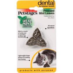 Jouet dentaire pour chat à la menthe Pressed Mint Leaves - PETSTAGES