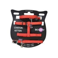 Kit harnais, laisse et collier spécial Chaton Safe - BOBBY