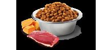 FARMINA - N&D  Canard, Potiron, Melon pour chat Adulte
