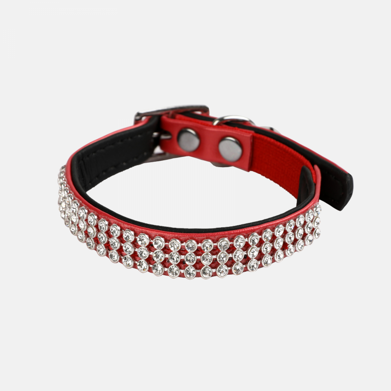 Collier à strass pour chat - WOUAPY