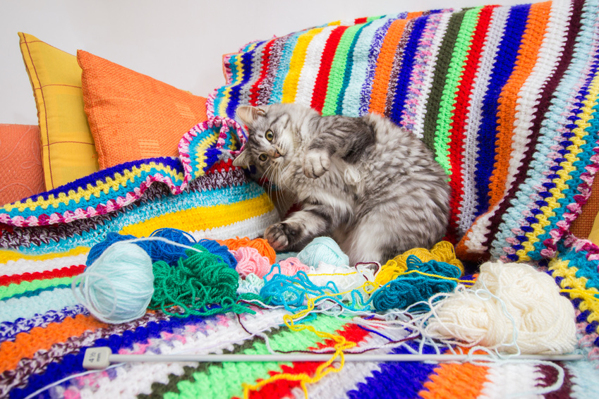 chat couverture en crochet.jpg