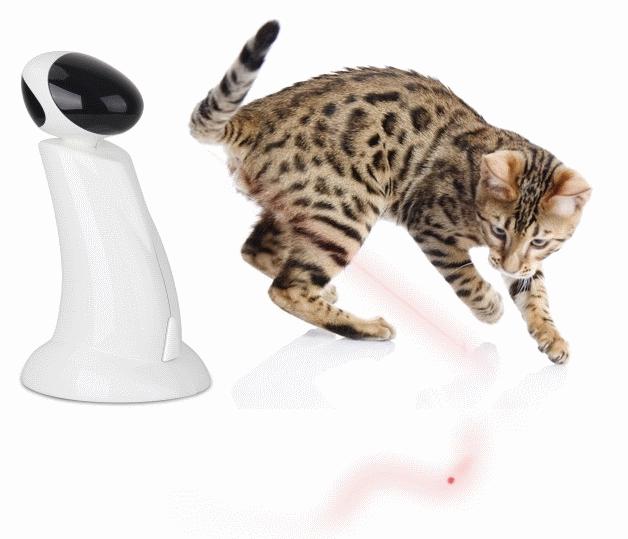 Robot laser pour chat