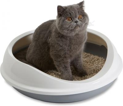 Le bac à litière Figaro est idéal pour les chatons et les chats adultes
