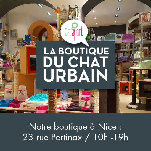 La Boutique du Chat Urbain à Nice